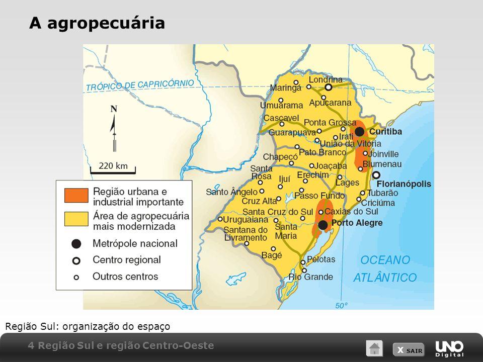 A agropecuária Região Sul: organização do espaço
