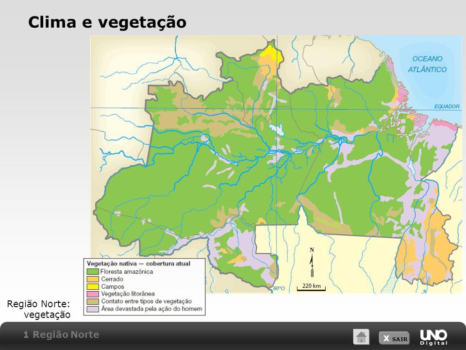 Clima e vegetação Região Norte: vegetação 1 Região Norte