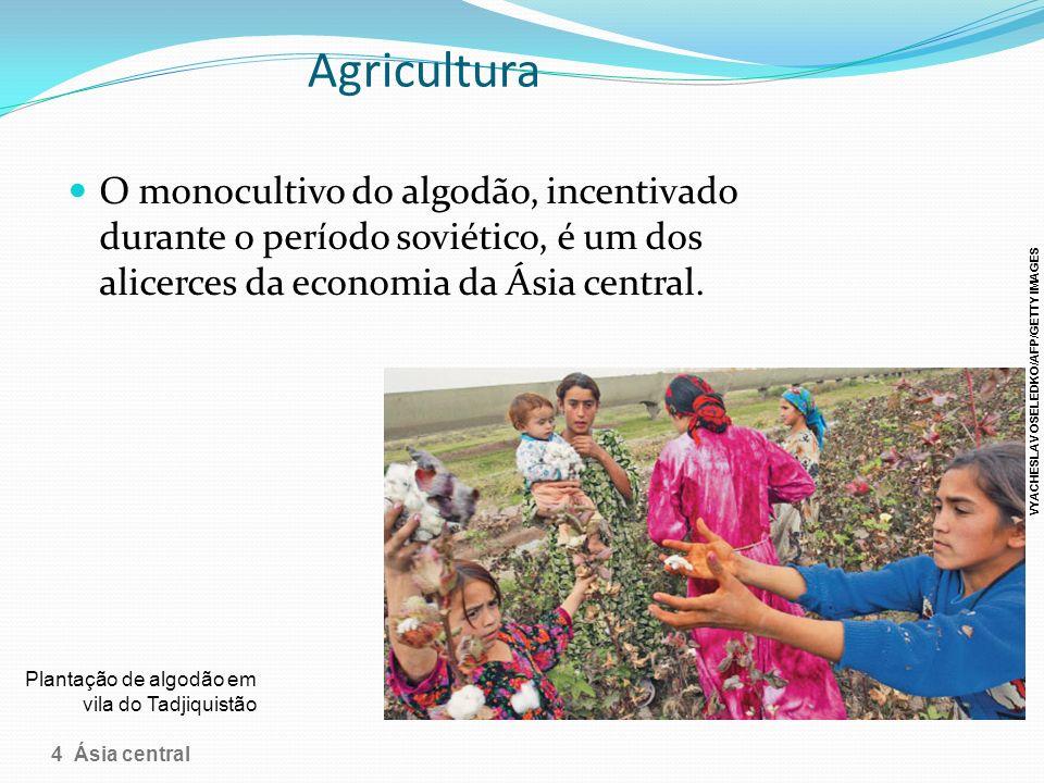 Agricultura O monocultivo do algodão, incentivado durante o período soviético, é um dos alicerces da economia da Ásia central.