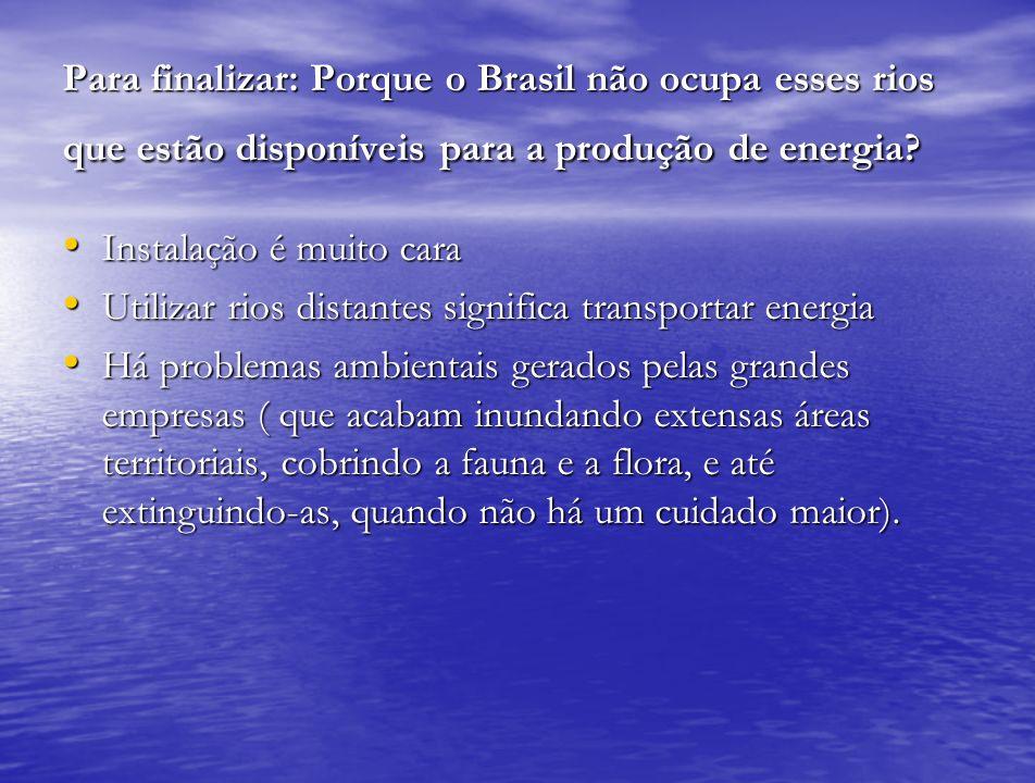Para finalizar: Porque o Brasil não ocupa esses rios que estão disponíveis para a produção de energia