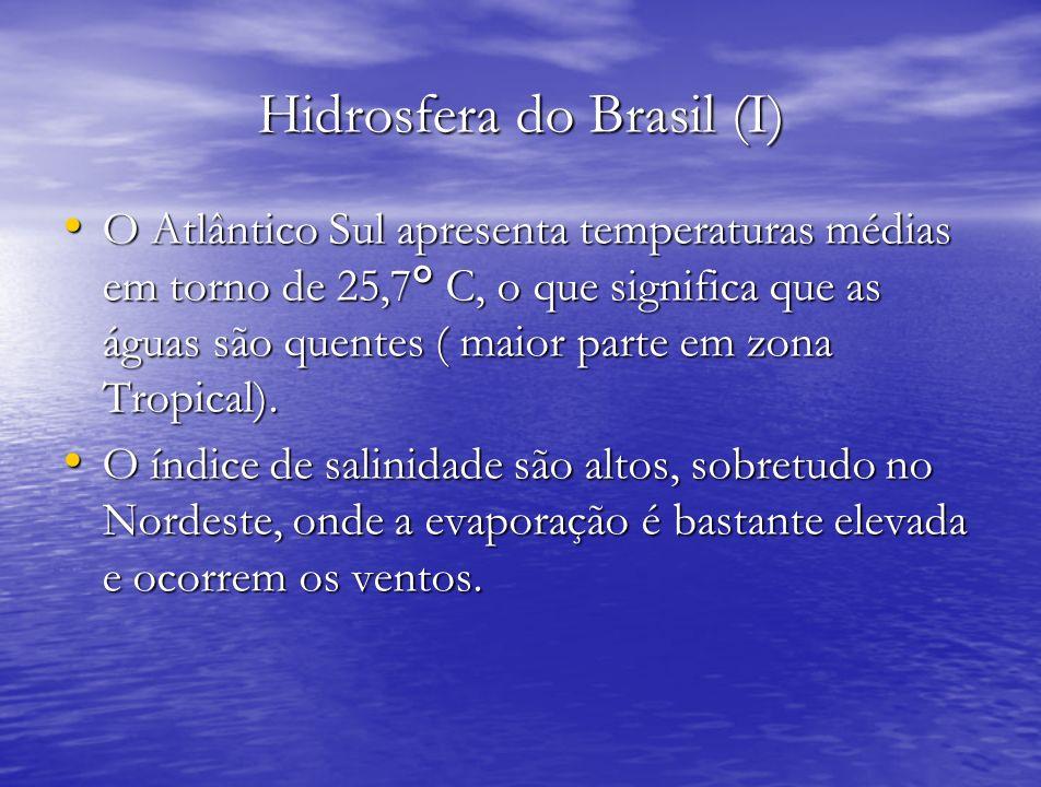 Hidrosfera do Brasil (I)