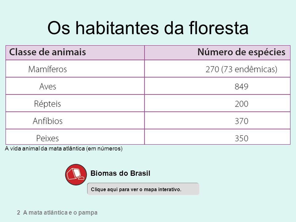 Os habitantes da floresta