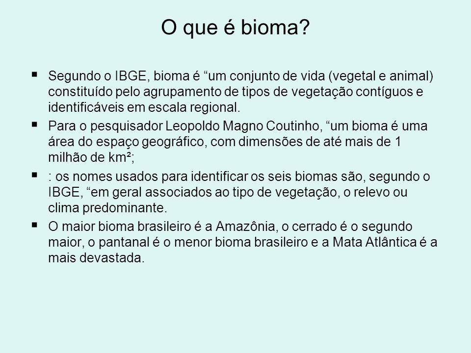 O que é bioma