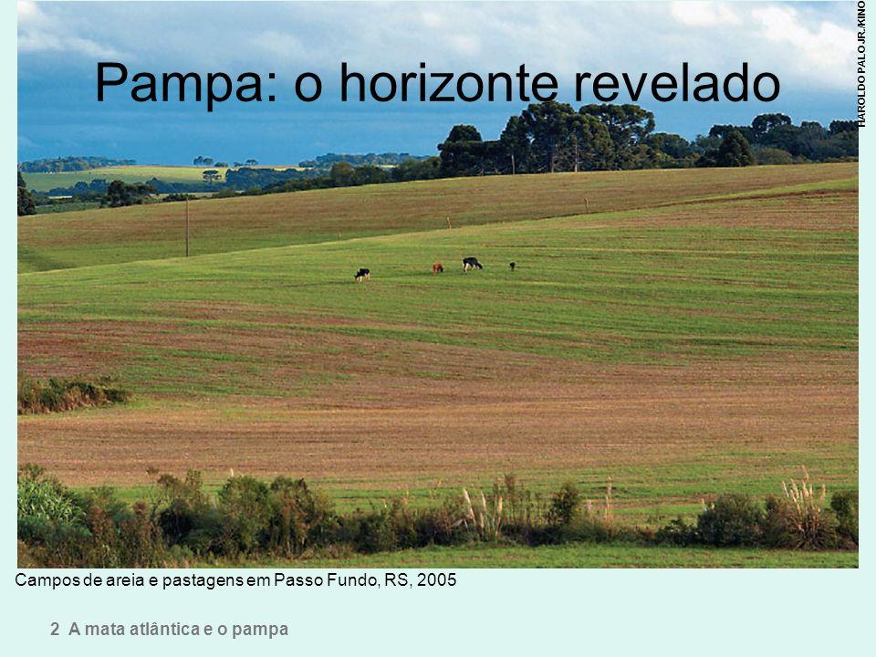 Pampa: o horizonte revelado