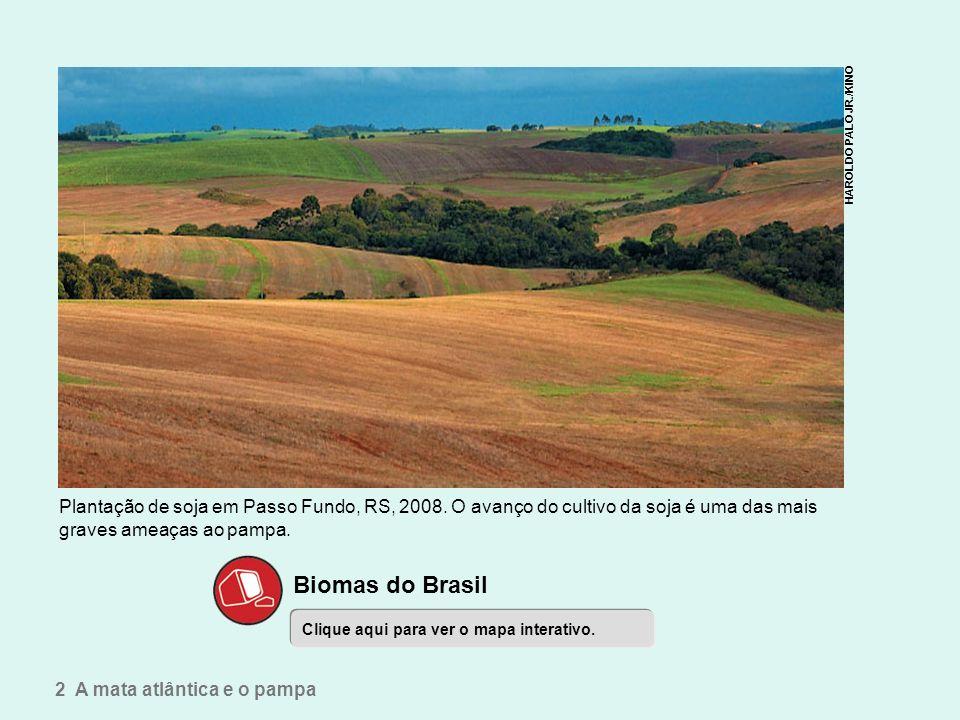 Um mar verde ameaçado Biomas do Brasil