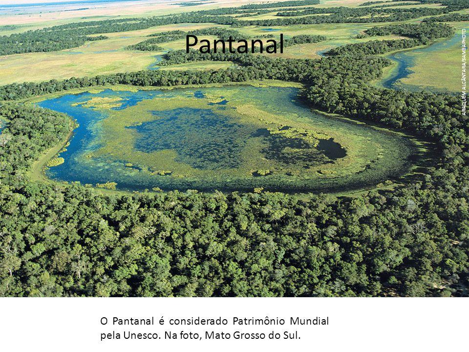 Pantanal ARAQUÉM ALCÂNTARA/SAMBAPHOTO. O Pantanal é considerado Patrimônio Mundial pela Unesco.