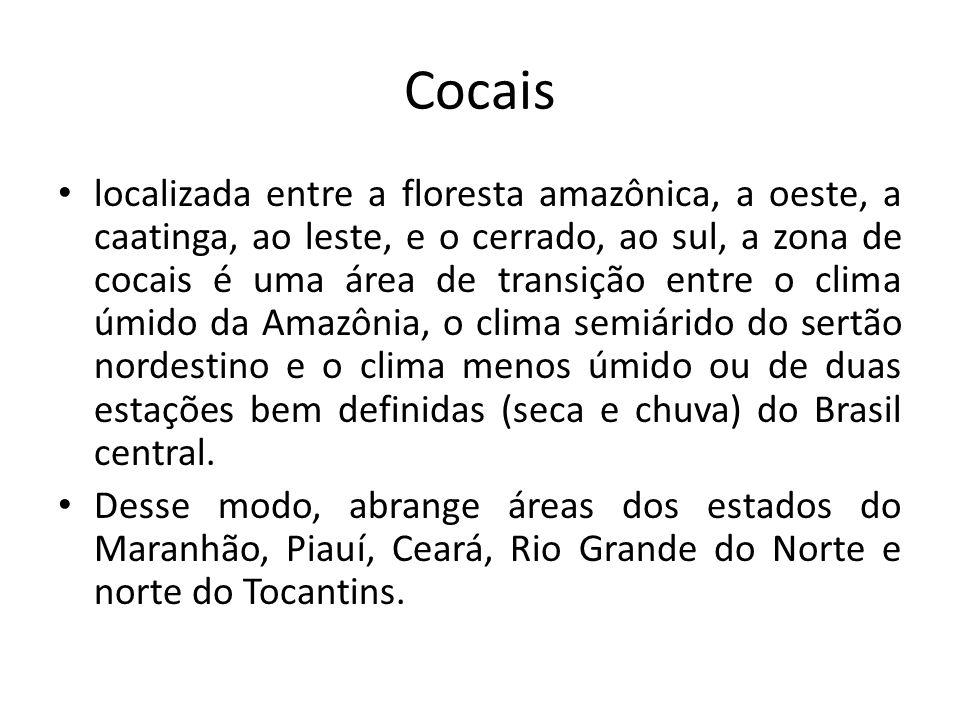 Cocais