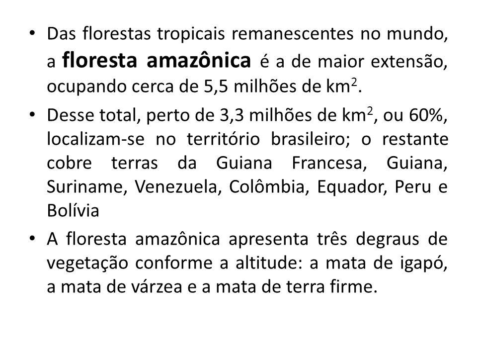 Das florestas tropicais remanescentes no mundo, a floresta amazônica é a de maior extensão, ocupando cerca de 5,5 milhões de km2.
