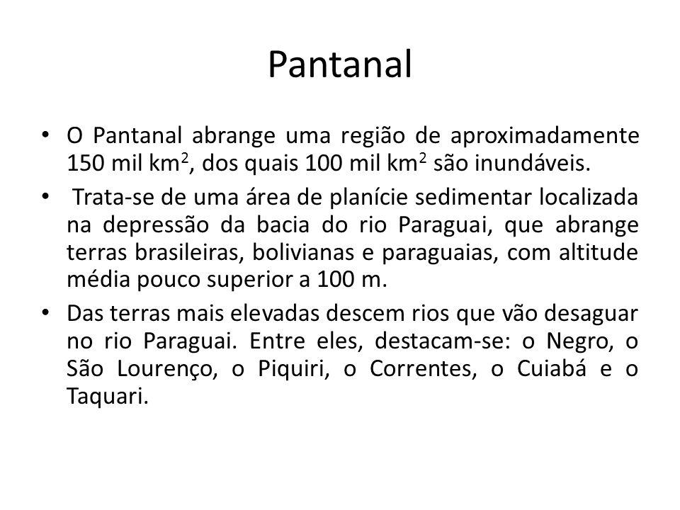 Pantanal O Pantanal abrange uma região de aproximadamente 150 mil km2, dos quais 100 mil km2 são inundáveis.