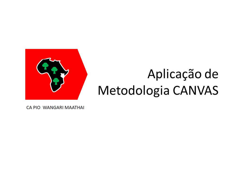 Aplicação de Metodologia CANVAS