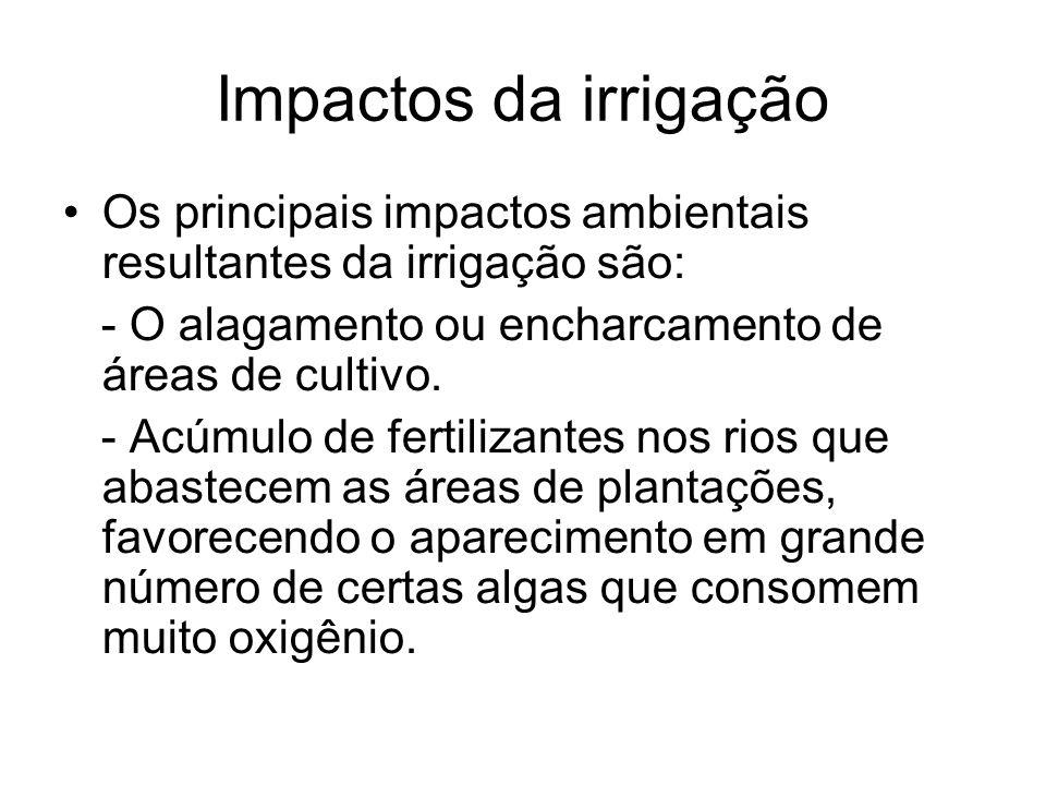 Impactos da irrigação Os principais impactos ambientais resultantes da irrigação são: - O alagamento ou encharcamento de áreas de cultivo.
