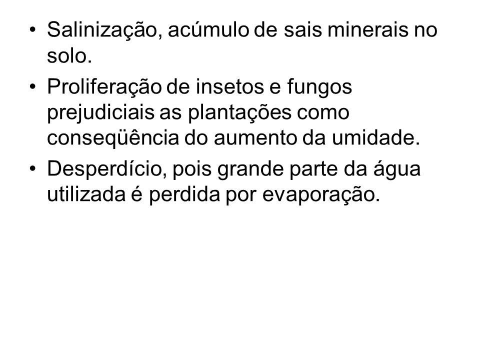 Salinização, acúmulo de sais minerais no solo.