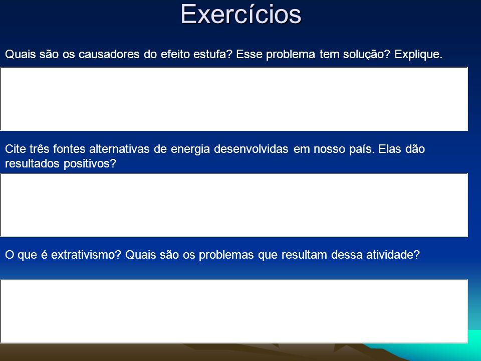 Exercícios Quais são os causadores do efeito estufa Esse problema tem solução Explique.