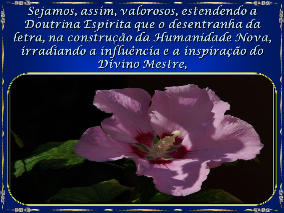 Sejamos, assim, valorosos, estendendo a Doutrina Espírita que o desentranha da letra, na construção da Humanidade Nova, irradiando a influência e a inspiração do Divino Mestre,