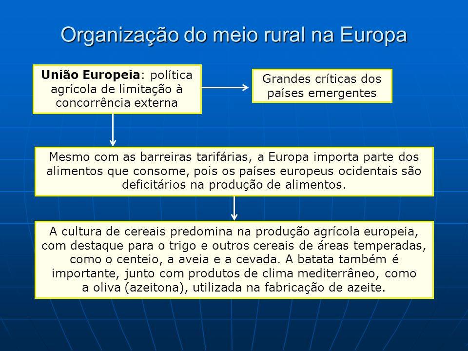 Organização do meio rural na Europa