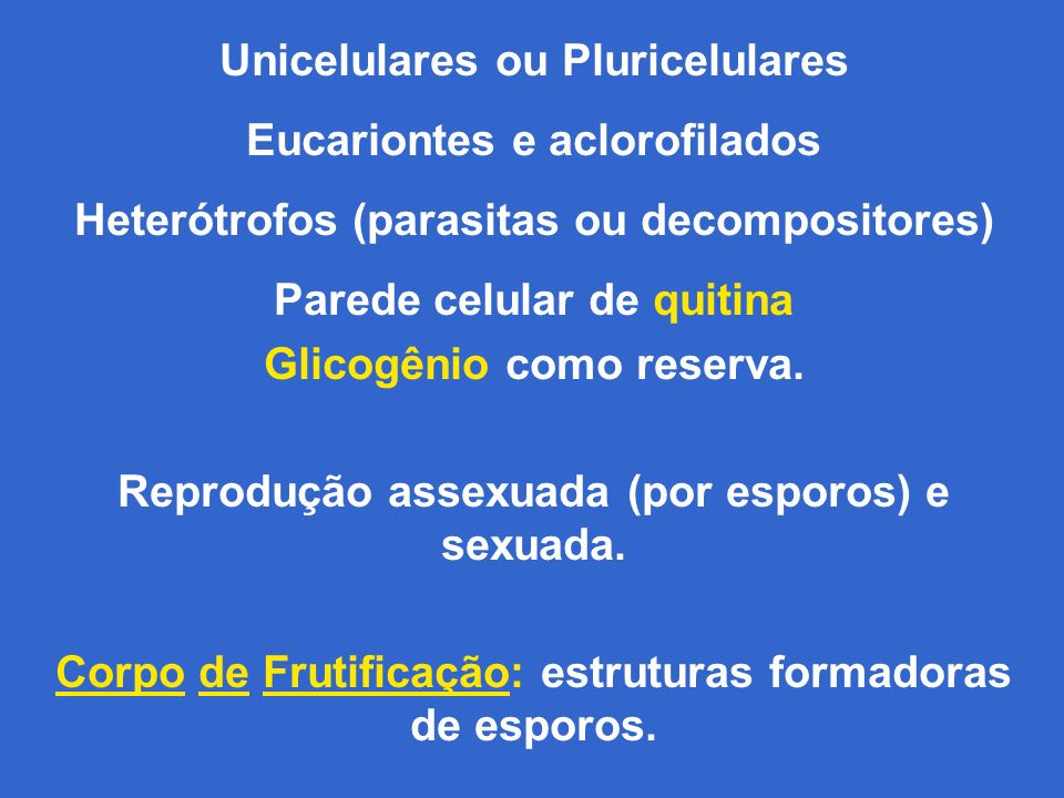 Unicelulares ou Pluricelulares Eucariontes e aclorofilados