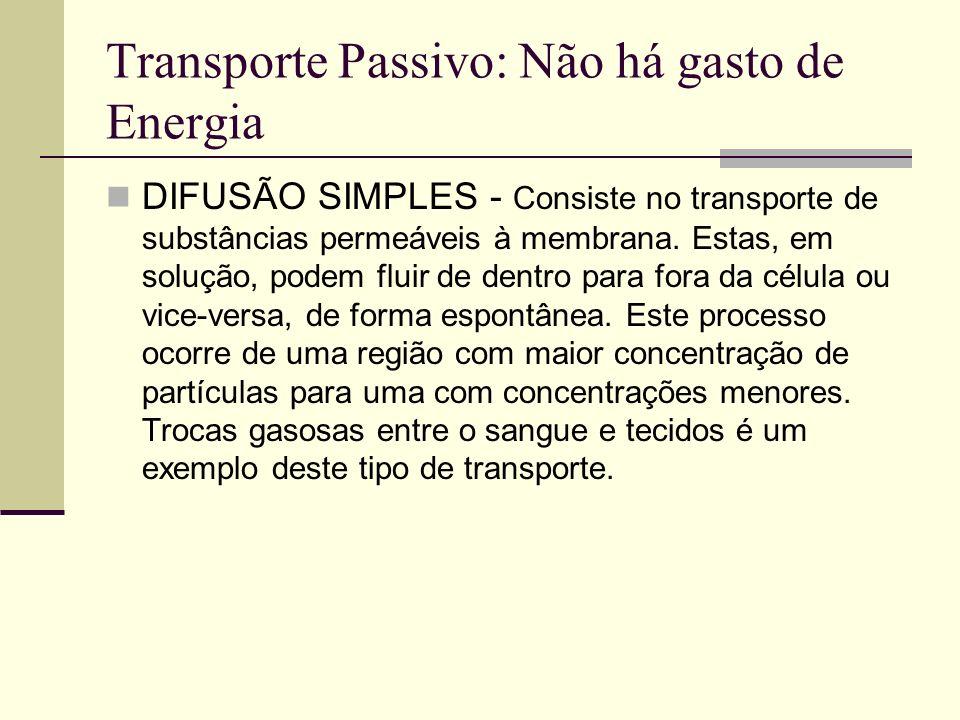Transporte Passivo: Não há gasto de Energia