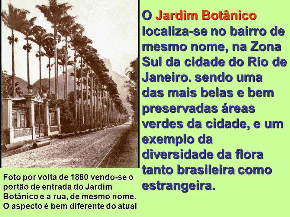 O Jardim Botânico localiza-se no bairro de mesmo nome, na Zona Sul da cidade do Rio de Janeiro. sendo uma das mais belas e bem preservadas áreas verdes da cidade, e um exemplo da diversidade da flora tanto brasileira como estrangeira.