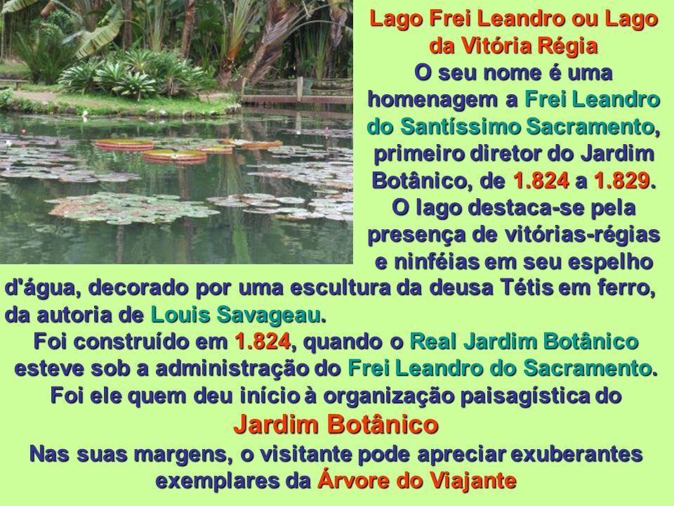 Lago Frei Leandro ou Lago da Vitória Régia