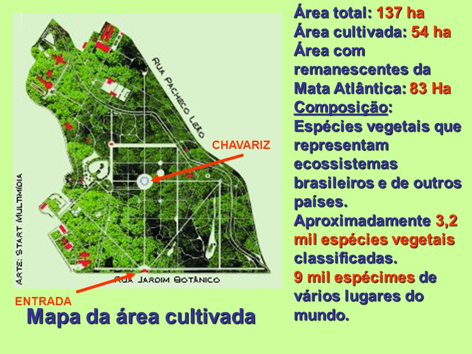 Mapa da área cultivada Área total: 137 ha Área cultivada: 54 ha