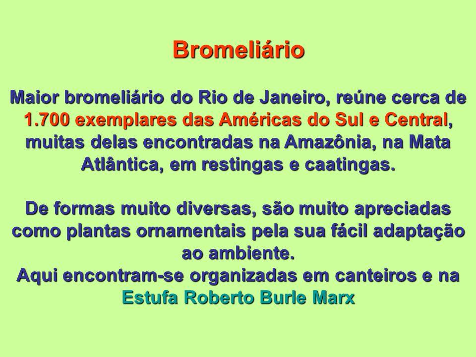 Bromeliário