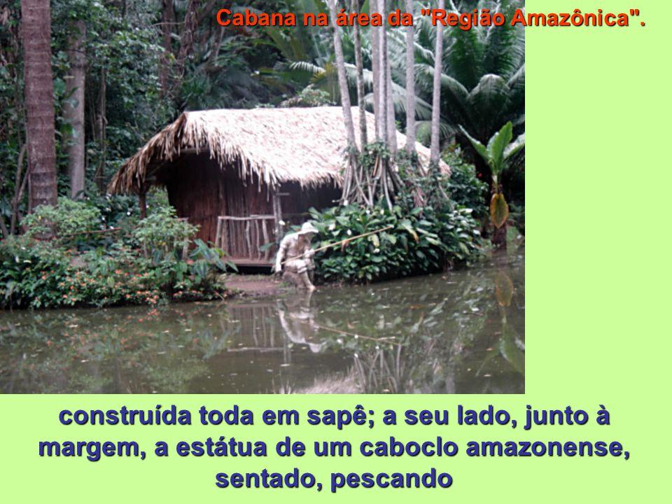 Cabana na área da Região Amazônica .