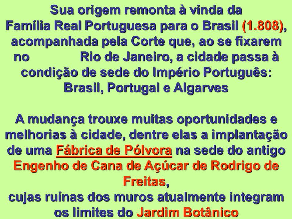 Sua origem remonta à vinda da Família Real Portuguesa para o Brasil (1
