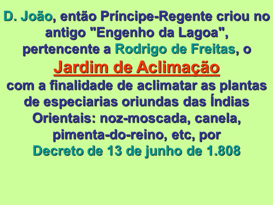 D. João, então Príncipe-Regente criou no antigo Engenho da Lagoa , pertencente a Rodrigo de Freitas, o Jardim de Aclimação com a finalidade de aclimatar as plantas de especiarias oriundas das Índias Orientais: noz-moscada, canela, pimenta-do-reino, etc, por