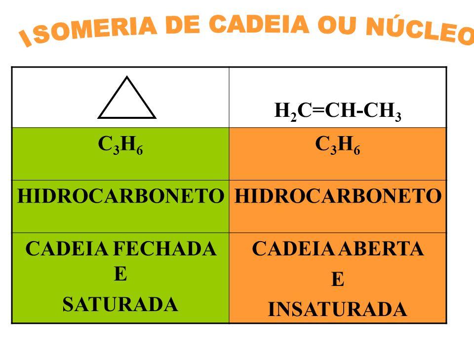 ISOMERIA DE CADEIA OU NÚCLEO