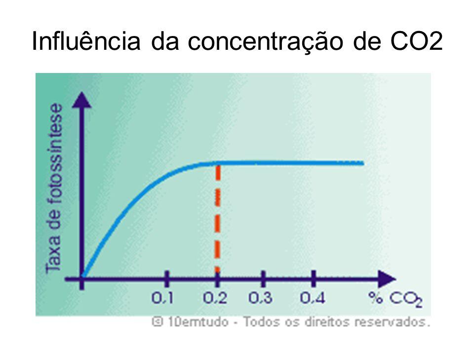 Influência da concentração de CO2