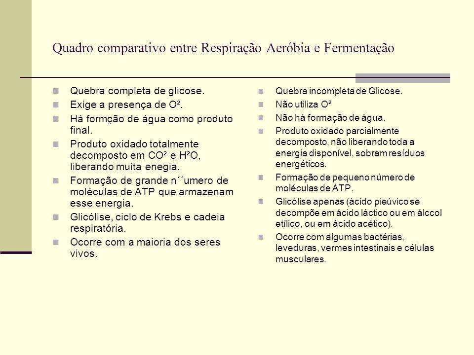 Quadro comparativo entre Respiração Aeróbia e Fermentação