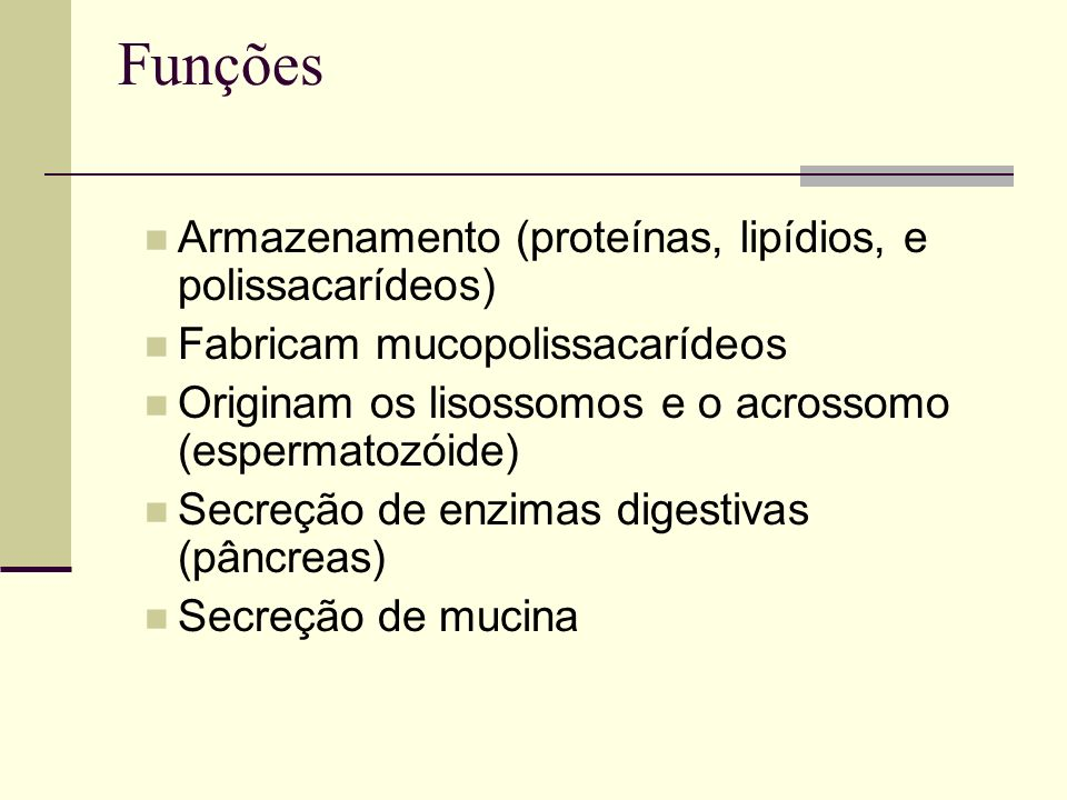 Funções Armazenamento (proteínas, lipídios, e polissacarídeos)