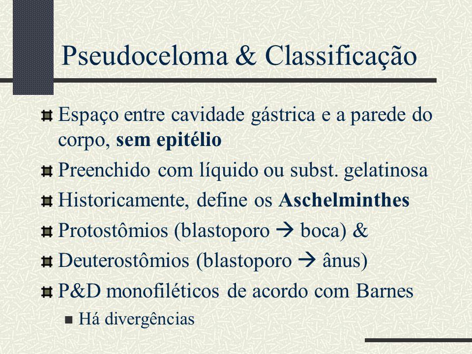 Pseudoceloma & Classificação