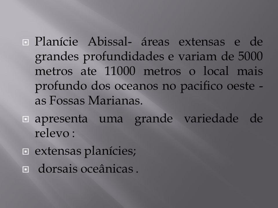Planície Abissal- áreas extensas e de grandes profundidades e variam de 5000 metros ate 11000 metros o local mais profundo dos oceanos no pacifico oeste - as Fossas Marianas.