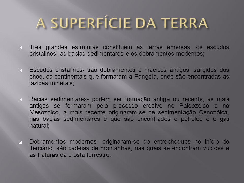 A SUPERFÍCIE DA TERRA Três grandes estruturas constituem as terras emersas: os escudos cristalinos, as bacias sedimentares e os dobramentos modernos;