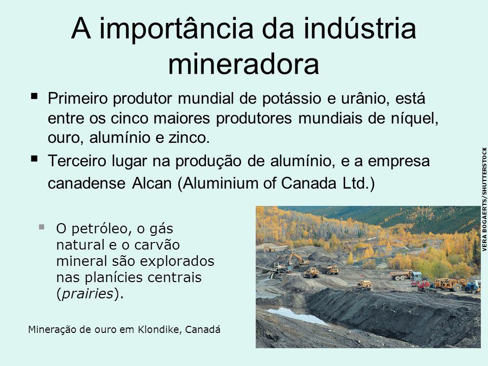 A importância da indústria mineradora