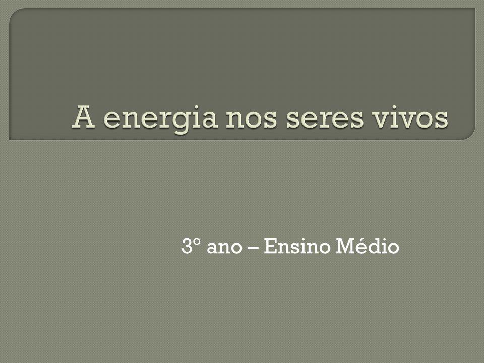 A energia nos seres vivos