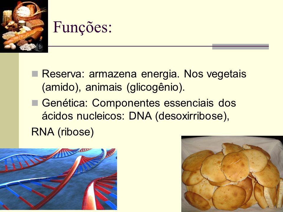 Funções:Reserva: armazena energia. Nos vegetais (amido), animais (glicogênio).