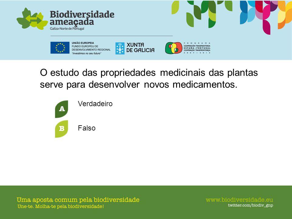 O estudo das propriedades medicinais das plantas