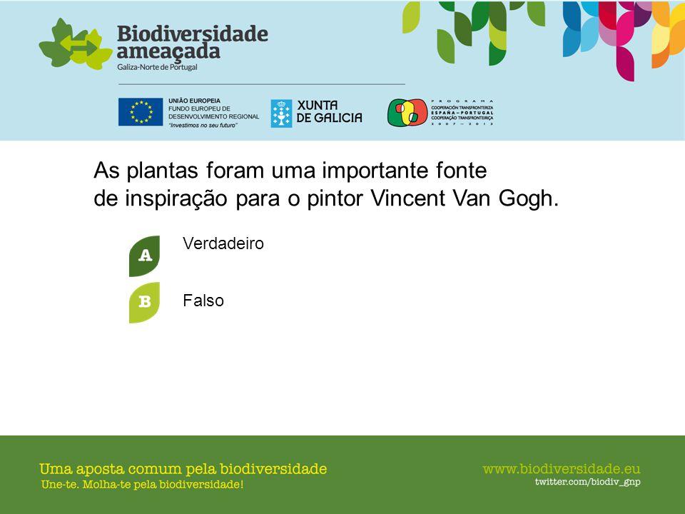 As plantas foram uma importante fonte