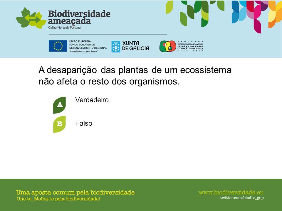 A desaparição das plantas de um ecossistema