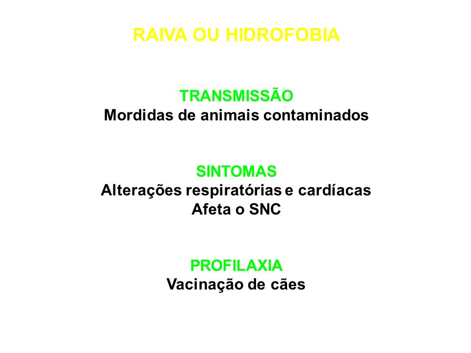 Mordidas de animais contaminados Alterações respiratórias e cardíacas