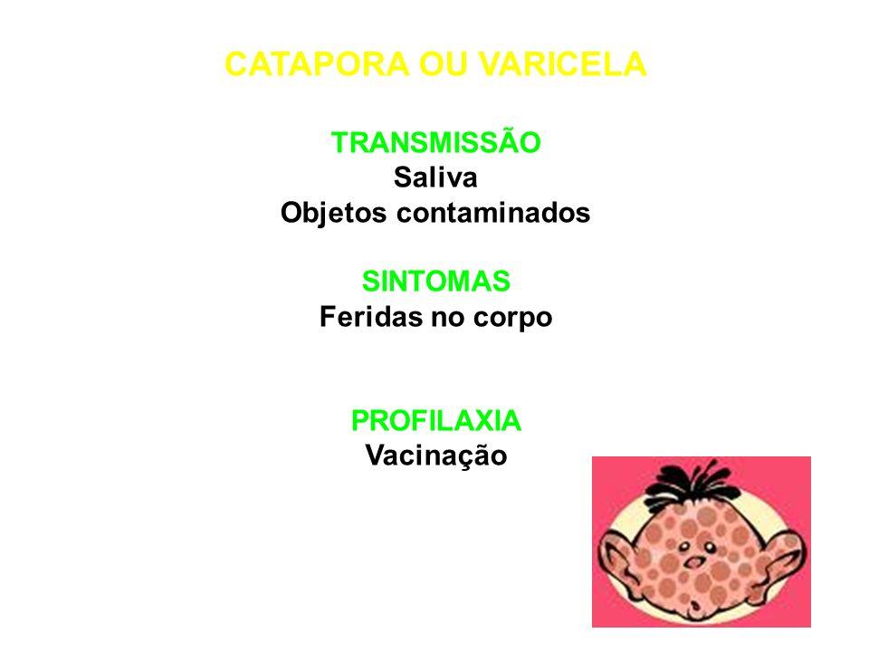 CATAPORA OU VARICELA TRANSMISSÃO Saliva Objetos contaminados SINTOMAS