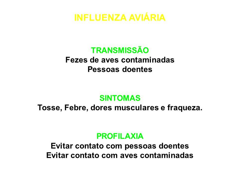 INFLUENZA AVIÁRIA TRANSMISSÃO Fezes de aves contaminadas