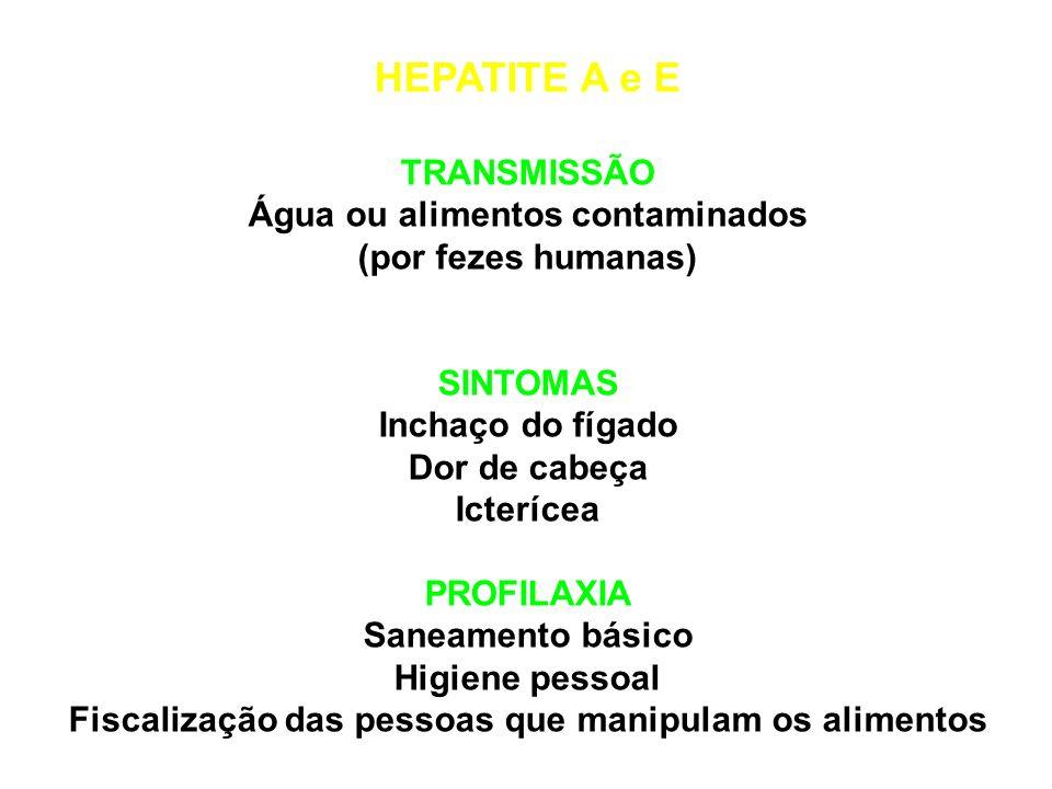 HEPATITE A e E TRANSMISSÃO Água ou alimentos contaminados