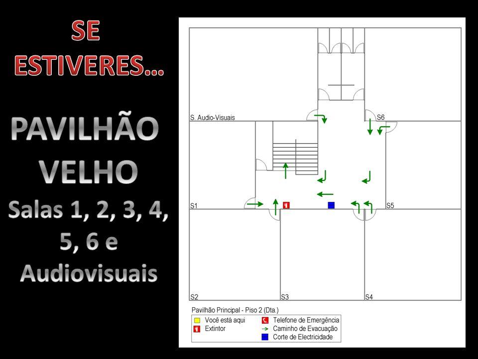 SE ESTIVERES… PAVILHÃO VELHO Salas 1, 2, 3, 4, 5, 6 e Audiovisuais