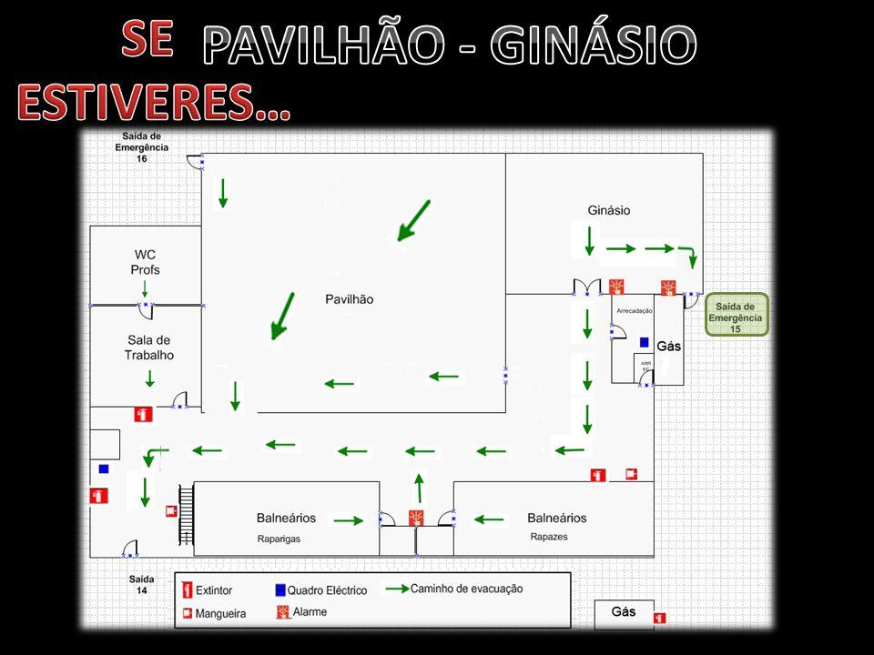 SE ESTIVERES… PAVILHÃO - GINÁSIO