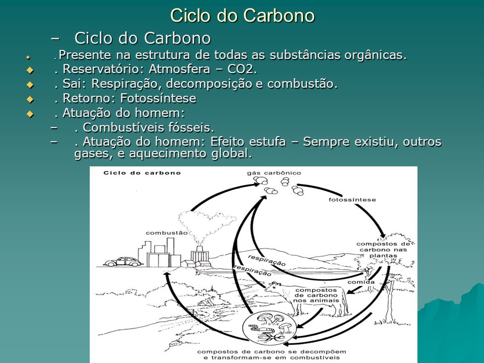 Ciclo do Carbono Ciclo do Carbono . Reservatório: Atmosfera – CO2.