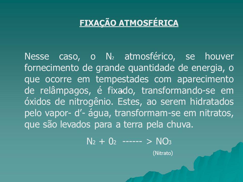 FIXAÇÃO ATMOSFÉRICA