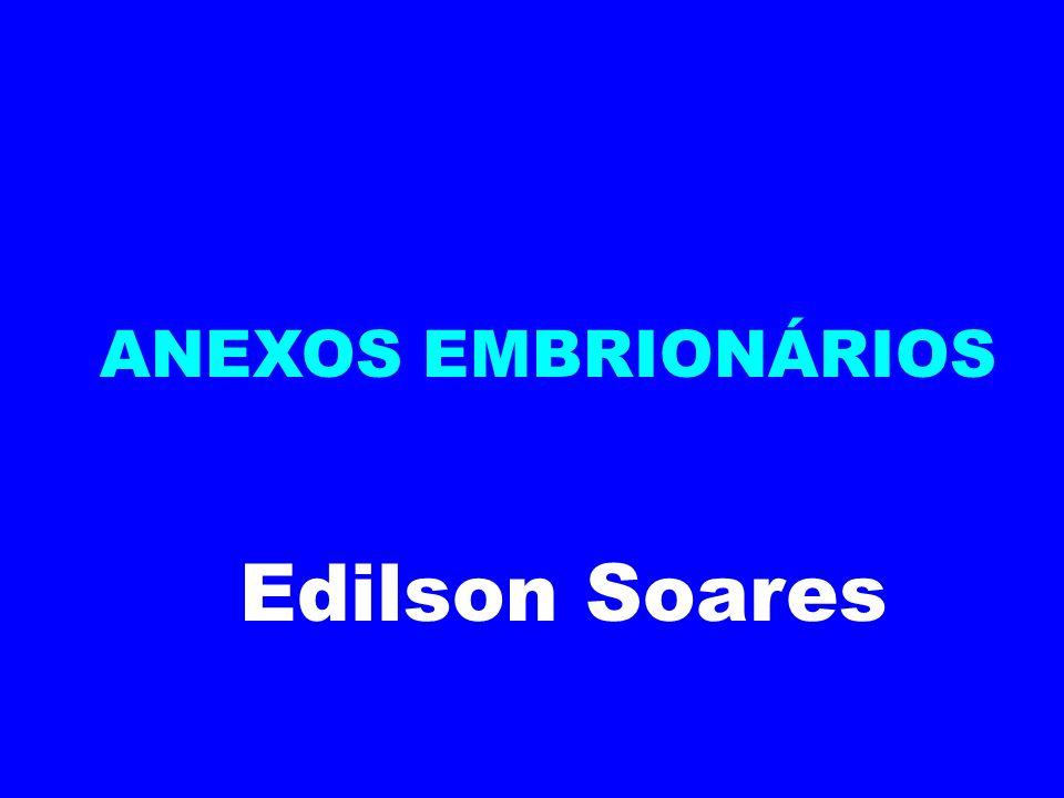 ANEXOS EMBRIONÁRIOS Edilson Soares